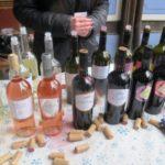 Дефиле на младото вино (4)
